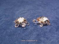 Baby Tortoises Golden Shadow (Set of 2)