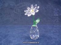 Flower Dreams - Daisy