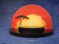 Sunset Display Lion King