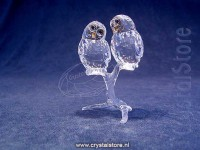 Owl Couple