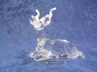 Annual Edition 1994 Kudu