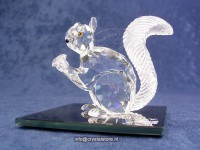 Jubilee Squirrel 10th SCS Anniversary