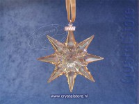 SCS Christmas Ornament, Annual Edition 2009