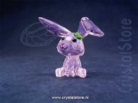Lucky the Rabbit