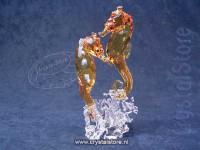 Seahorse Couple