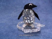 Penguin Madame