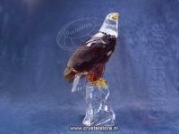 Bald Eagle - Showpiece