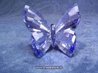 Butterfly Provence Lavender