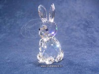 Rabbit Mother